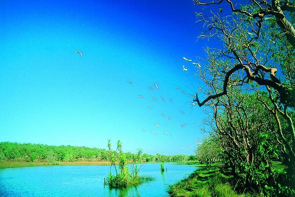 Mary River - Kakadu National Park
